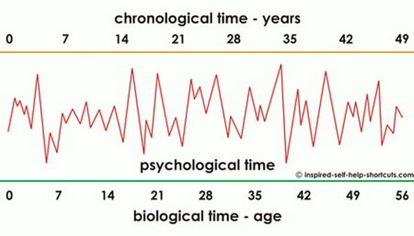This image indicates the effect of living a psychologically stressful life leads to an increase in the biological age of a person.