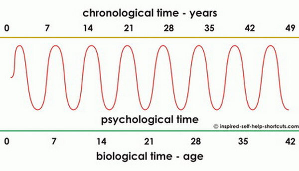 This image indicates that the effect of living a psychologically relaxed life leads to a reduction in the biological age of a person.