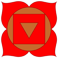 The root chakra subtle energy system.